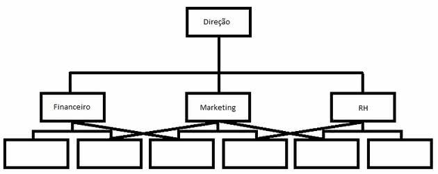 Estrutura organizacional funcional